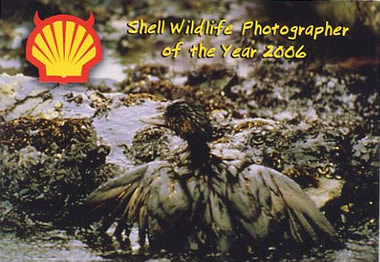 Anti-Shell cartoon